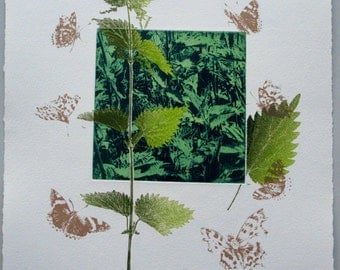 Butterflies love nettles. Photo Etching mono print with screenprint. Limited edition