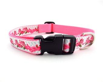 Large Pink Roses Dog Collar