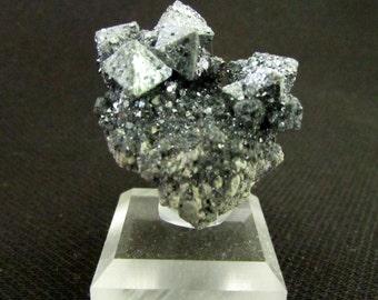 Mineral Specimen - Hematite pseudomorph Magnetite - Volcan Payun Matru, Malargue, Argentina - Geology - NearEarthExploration
