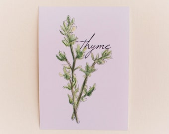 Thyme Print OR Any 1 Cooking Herb Print