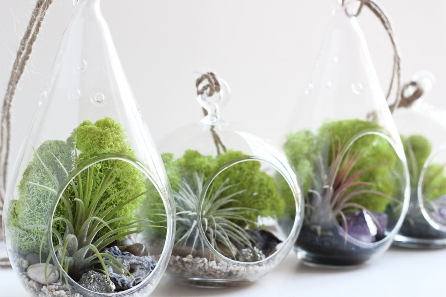 DIY Terrarium Kit Air Plant With Geode And Pyrite Teardrop