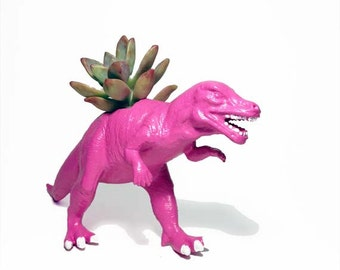Up-cycled Hot Pink Allosaurus Dinosaur Planter - With Succulent Plant