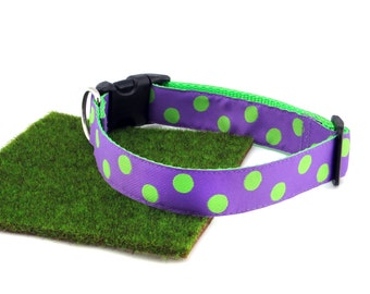 "Lime Green Polka Dots With Lilac Spring Summer Dog Collar, 1"" Wide"