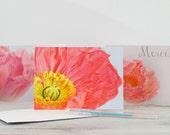 Note cards thank you French Poppies  greetings cards photography print set of 3 folded cards-photography Art cards - still life flower