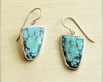 Perfect Turquoise Earrings