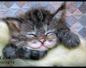 Needle Felted Pet Portrait – Sleeping Kitten