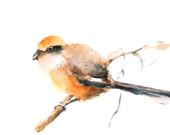 Watercolor Painting Art Print of Yellow Bird on a Branch, Watercolour Wall Art
