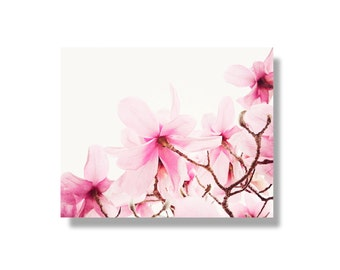 Pink magnolia flower canvas wall art, pale pink, magnolias, flower art, spring wall art, garden flower photography - Sweet Pink