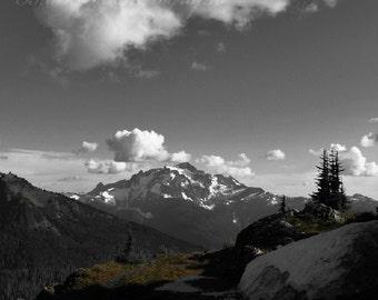 John Muir, Inspirational Art, Wilderness Nature Photography, Mountain, Forest Landscape Photography, motivational, 5x7 fine art photo print