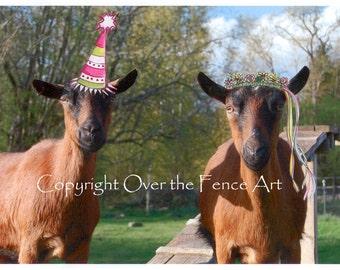 Animal Photography, Birthday Card, Goat Photograph, Farm Animals, Goats ,Photo Card, Handmade Card, Pet Portrait,