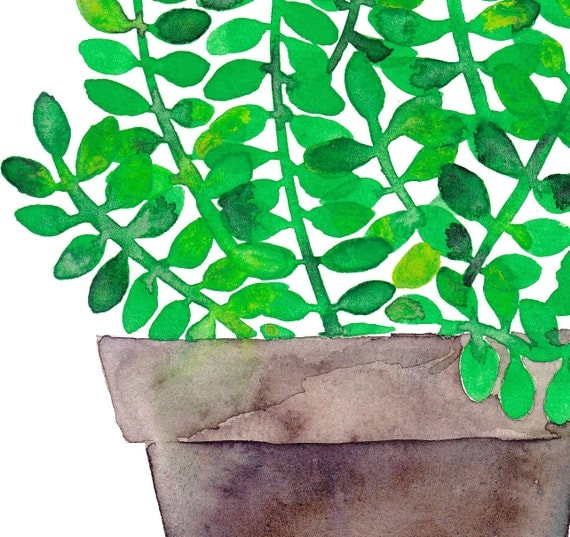 https://www.etsy.com/listing/204214723/green-jade-original-watercolor-succulent