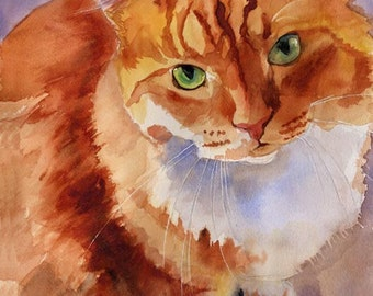 Marmalade Tabby Cat  Art Print of a Watercolor Handmade Painting with White Bib Chest