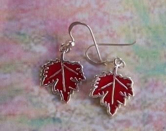 Sterling Silver Autumn Maple Leaf Earrings