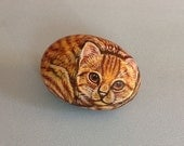 Tabby painted on a rock