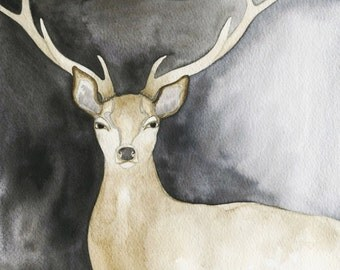Charcoal Deer  // archival print