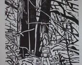 Rainforest - Original Hand-Pulled Woodblock Print