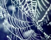 Spider web, navy blue, ice, winter, indigo, water droplets, black, frost, bokeh, simple home decor - Diamonds 8x8