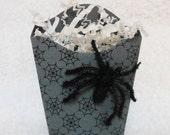Spider Halloween Favor Box, Gray spider web with flocked spider