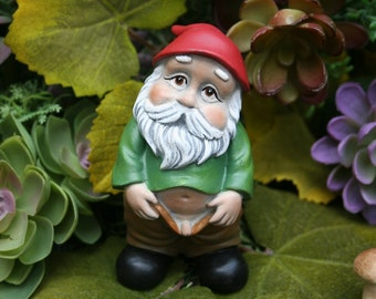 "Rude Gnome - Pants Down Watering the Mushrooms - ""PeeWee"" - Funny Gnome"