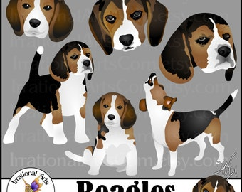 Beagles Dog Graphics set 1 - 6 digital graphics with 3 beagles and 3 faces {Instant Download}