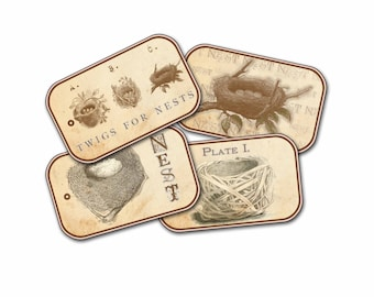Birds Nest Tags, Autumn Nests,  Springtime Nests,  Brown and Cream Natural Bird Nests