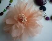 SMALL PEONY FLOWER , Peach  / tmp