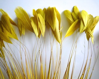 STRIPPED COQUE FEATHERS   /  French Mustard Yellow / 1123