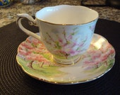 Beautiful china cup and saucer- Prince Albert Blossom Time pattern- England