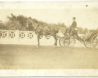 Vintage Victorian Equine Photo Man In Top Hat In Horse And Buggy At Estate Antique Photograph