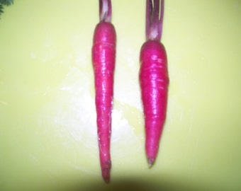 200 seeds carrot red dragon heirloom Free Shipping