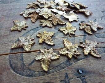 Vintage Brass Stamping Maple Leaf (8)