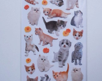 Kawaii Japanese Stickers - Cute Cats (10941)