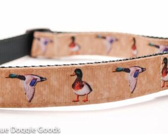 Mallard Ducks Dog Collar / Hunting Dog/ Retriever
