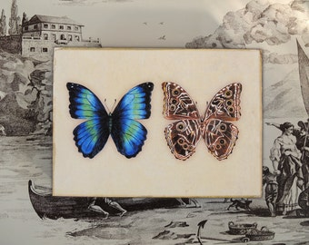 Original Illustration Morpho Butterfly print on a wood block gardening art nature design spring home decor