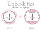 Twin Girls Monthly Milestone Stickers- monthly baby stickers- baby bodysuit sticker- with optional Gerber ONESIES- GRL333 & GRL335
