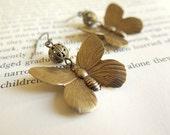 BUTTERFLY // Filigree brass earrings with Butterflies
