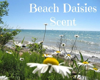 BEACH DAISIES Scented Soy Wax Melts - Soy Wax Tarts - Uplifting Floral Scent - Wickless Candle - Air Freshener - Highly Scented - Hand Made