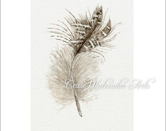 Fuzzy brown feather, watercolor 5x7  giclee print