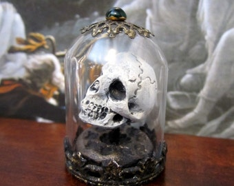 Victorian Skull Specimen dollhouse miniature in 1/12 scale