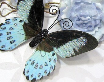 Butterfly Embellishments Blue Skies