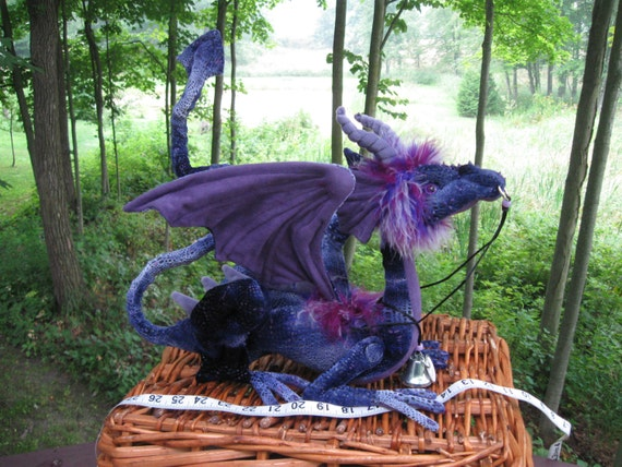Reserved for Erin Leigh, This is Foxglove, a Percher Shoulder Dragon