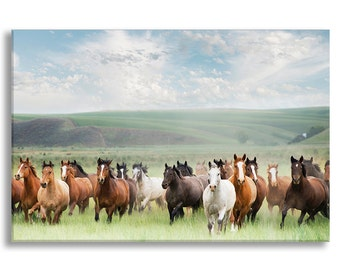 Horses Photo on Canvas, Footloose in the Palouse, Nature Fine Art Gallery Wrapped Canvas, Large Wall Art, Home Decor