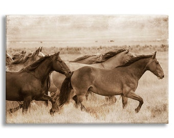Wild Horses Photo on Canvas, Sepia Nature Fine Art Photograph on Gallery Wrapped Canvas, Black and White Wall Art, Home Decor