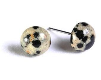 Dalmatian Jasper gemstone hypoallergenic stud post earrings (744) - Flat rate shipping