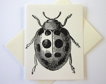 Ladybug Note Cards Set of 10 with Matching Envelopes