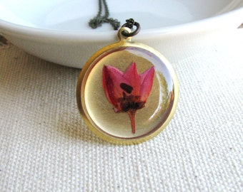 Pressed Flower Necklace Botanical Jewelry Pressed Coral Pink Boronia Plant Resin Woodland Garden Chic Naturalist Gift