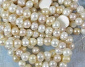 Multi-color Freshwater Pearl Beads 60% off, qty 49
