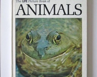 Vintage Animal Book The Life Picture Book Hardcover 1969 Edition Illustrated Pictures