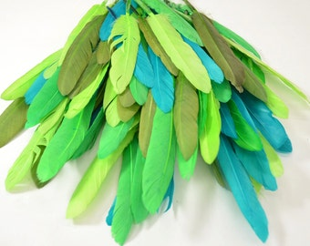 Middling Duck Quills, Stiff loose feathers - Amazon Rainforest (20pcs)