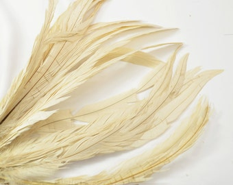 Magnifica Rooster Tail Feathers - Handpicked, Sand (10pcs)